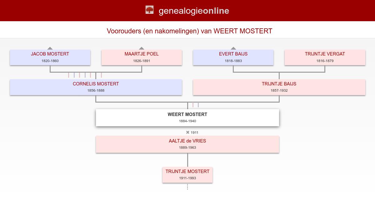 Weert Mostert 1884 1940 Mostert Losse Takken Genealogie Online