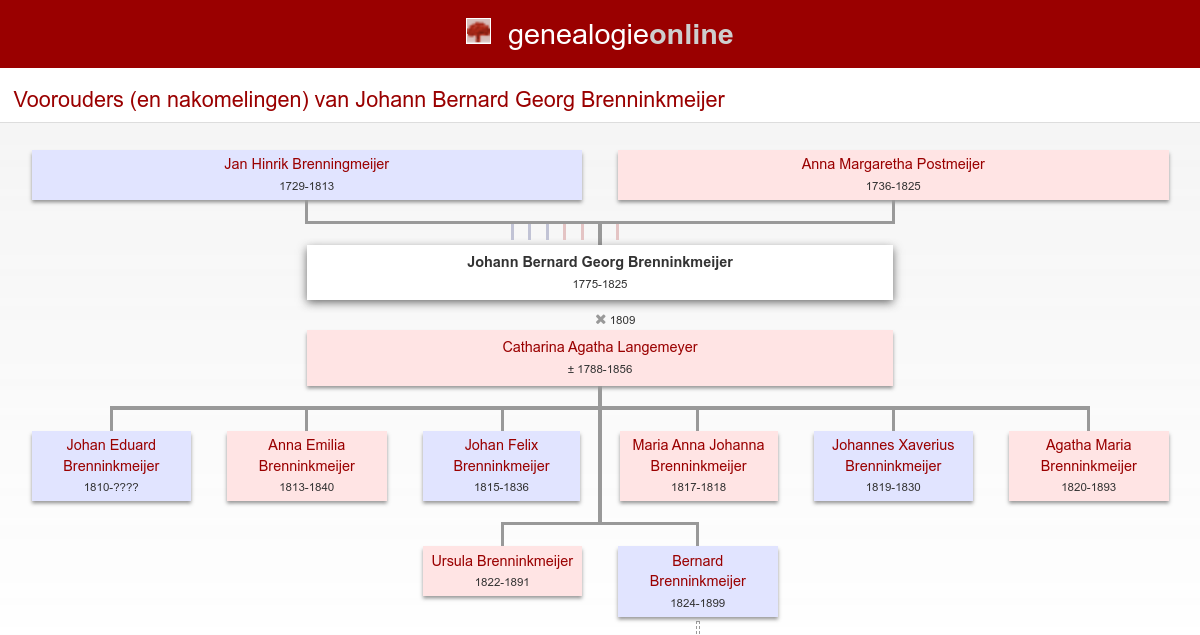 Brenninkmeijer Family Tree | Pics | Download |